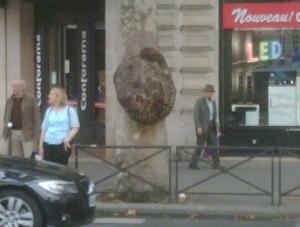 Burl in France